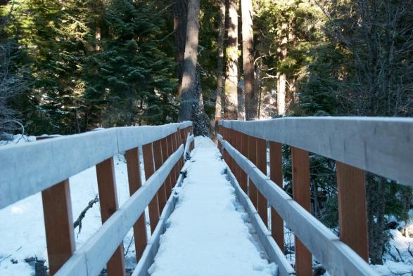 TFtrip-riverbridge