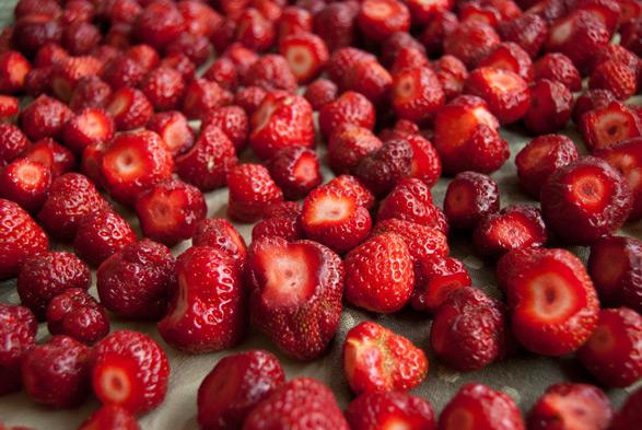 Jam-berries